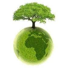 La journée mondiale de l'environnement – LFCI N°31 du 4 juin 2021